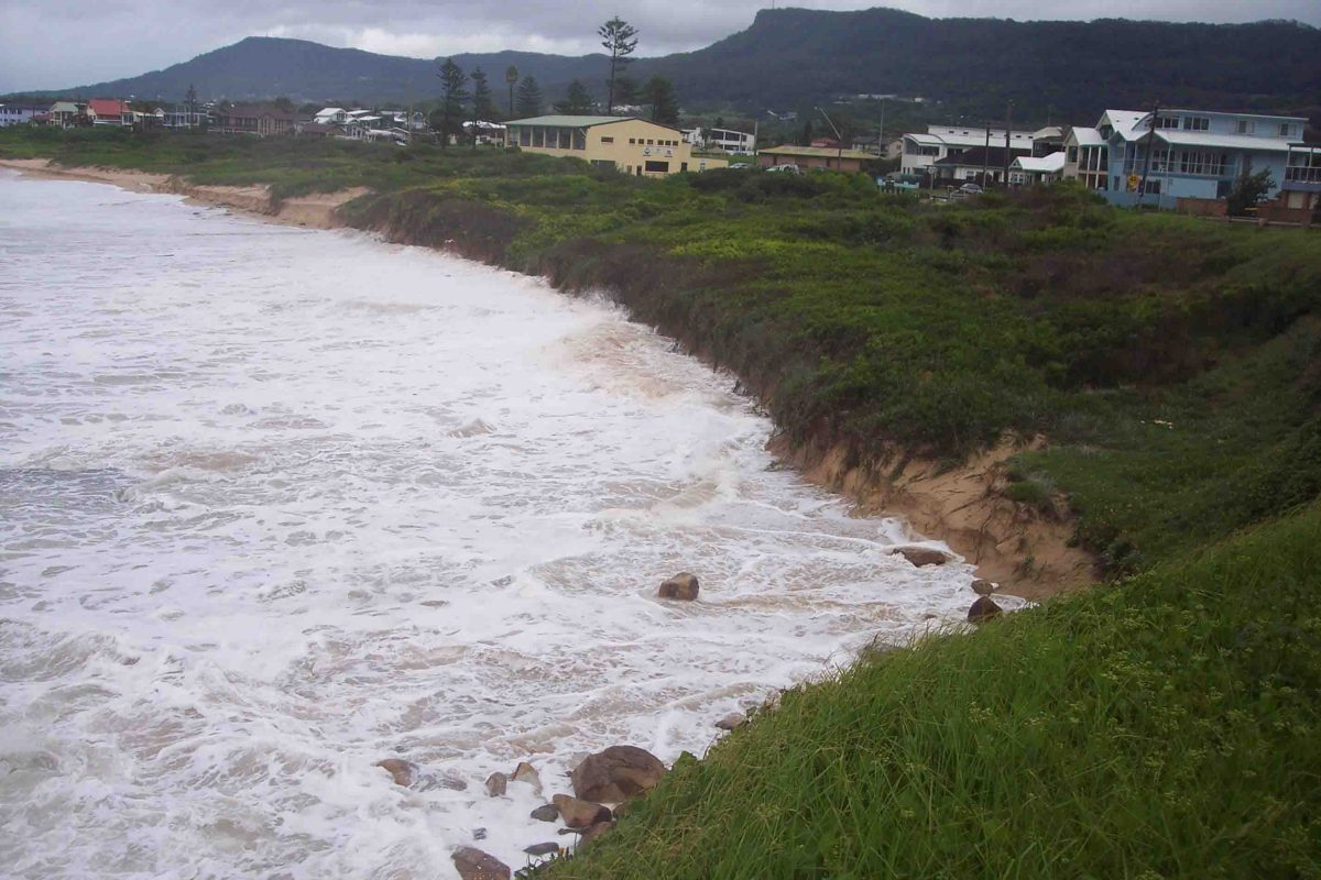 Council begins removing dune vegetation