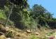 Bulli's record length 'landslide fence'