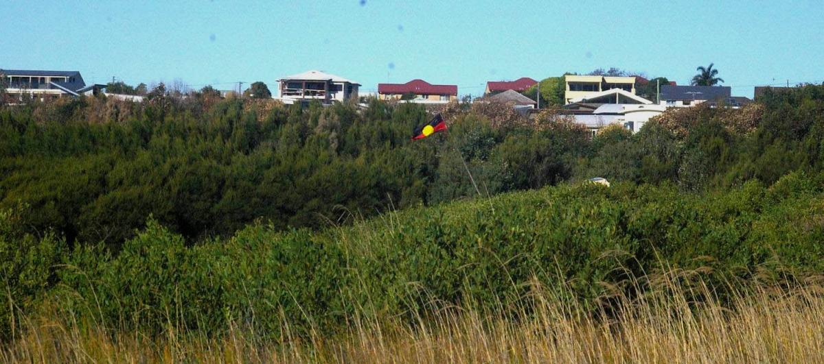 Bushcare suspends activities as vandalism continues unabated