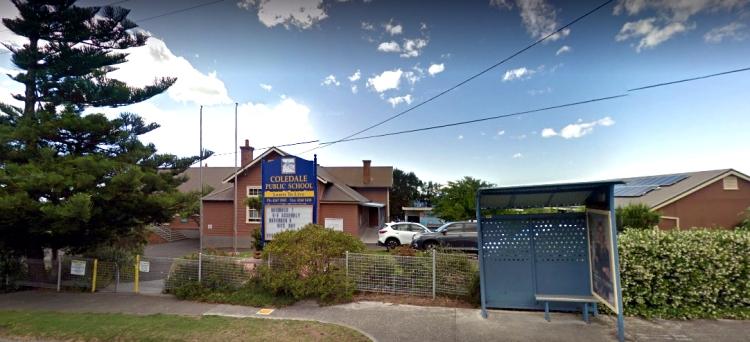 coledale public school google