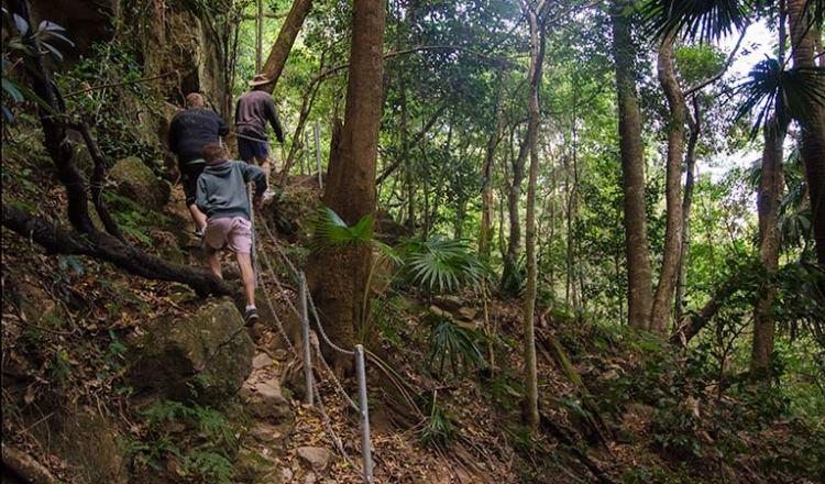 Mt Kembla Ring Track, Illawarra Escarpment State Conservation Area