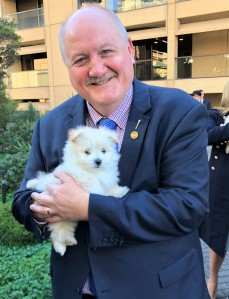 Heathcote residents encouraged to adopt, not shop this International Dog Day MR 22.8.19