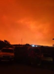 bermagui fire