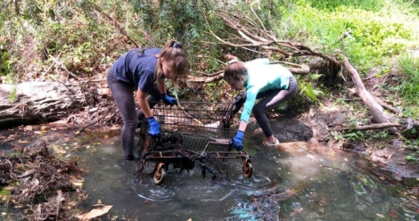 Northern beaches, creeks and parks targeted for this weekend's Clean Up Australia Day