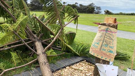 'Selfish' tree vandals strike again atTowradgi
